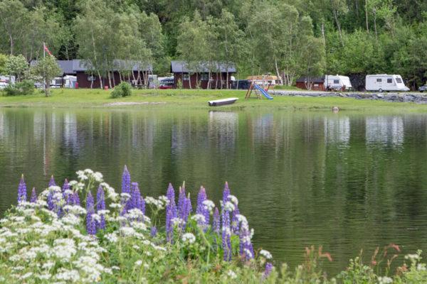 Åfjord laksecamping